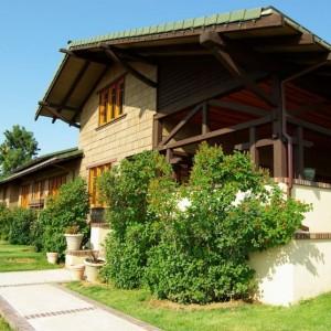 Lilac House